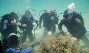 Diving in Zakynthos Zante